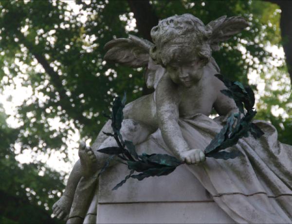 Zentralfriedhof10©GartenAkademie.com