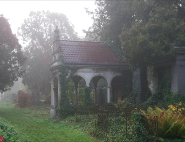 Zentralfriedhof12©GartenAkademie.com