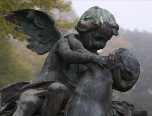 Zentralfriedhof3©GartenAkademie.com