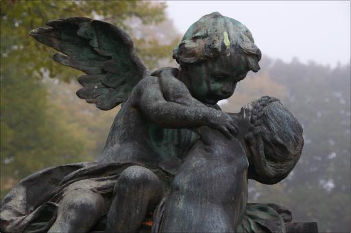 Morgens am Zentralfriedhof