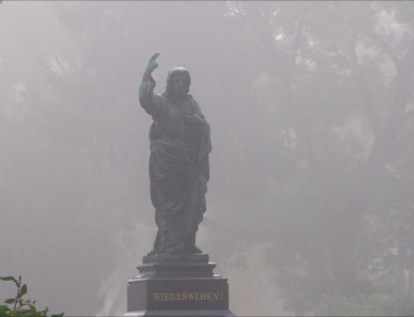 Zentralfriedhof9©GartenAkademie.com