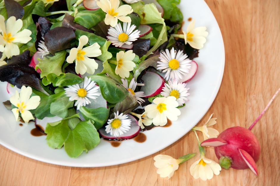 Frühlingssalat mit Primelblüten