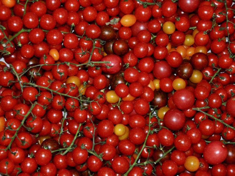 Cherrytomaten & Co.