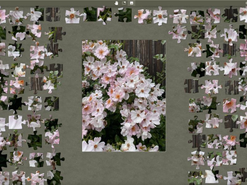 Herbstrosen-Romantik für Puzzle-Fans
